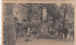 HOOGBOOM / KAPELLEN / RUSTHUIS WELVAART / OLV BEELD IN DE TUIN - Kapellen