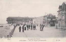 Fecamp Sur La Digue Promenade (LOT AE 23) - Fécamp