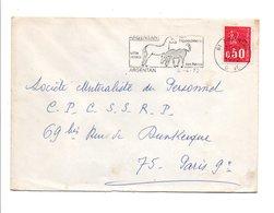 FLAMME HARAS HIPPODROME DE ARGENTAN ORNE 1972 - Postmark Collection (Covers)