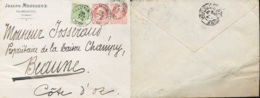 NN - [95260]NN-N° 74 2x + N° 83 Sur Lettre Obl De Falmignoul Le 29 Avril 1908 Vers Beaune (France) - 1905 Grosse Barbe