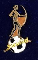 Football Pins  -  F.K. SIAULIAI (2004-2016 Logos)  - Lithuania. - Football