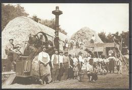 Hungary,  Bekescsaba(1931), Thresting, From Galberki Gyorgy Collection, Reproduction, 2006 - Hungary