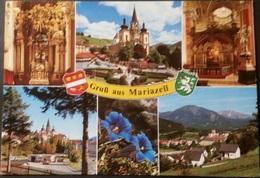 Ak Österreich - Mariazell - Gemeindealpe - Basilika - Busbahnhof - Ötscher - Mariazell