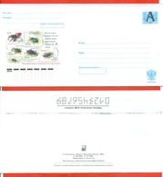Russia 2003. Envelope With A Printed Stamp.New. - Insects