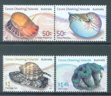 COCOS - MNH/*** LUXE  - 2007 - SHELLS - Yv 425-428 - Lot 18694 - Cocos (Keeling) Islands