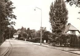 Ekeren - Zilverenhoek : Hoogboomsesteenweg - Zonder Classificatie