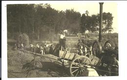 PAYSANS Du MORBIHAN Arradon Ou Saint-Avé - Les BATTAGES Vers 1920 -  Très Beau Plan Avec MACHINE AGRICOLE - Paysans