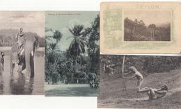 4 X Ceylon Sri Lanka - Sri Lanka (Ceylon)