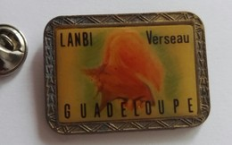 Pin's Guadeloupe  A Identifier - Badges