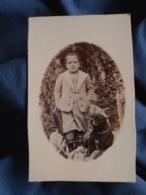 Photo CDV Sans Mention Photographe  Enfant Portant Un Grand Chapeau Avec Un Gros Chien  CA 1900 - L403B - Photographs