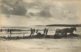 AUDIERNE - Pêcheurs De Goëmon. - Audierne