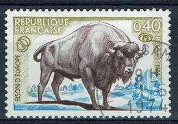 France, European Bison, Wisent, 1974, VFU - France