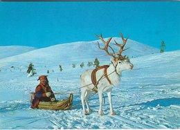 Alternative Transport In Lapland - Finland. Sent To Denmark  1974   # 07600 - Postcards