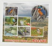 Malawi 2016 Indigenous Birds Vögel Oiseaux Faune Fauna MNH** - Coucous, Touracos