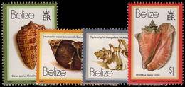 Belize 1981 Shells 1981 Imprint Set Of 4 Unmounted Mint. - Belize (1973-...)