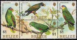 Belize 1984 Parrots Unmounted Mint. - Belize (1973-...)
