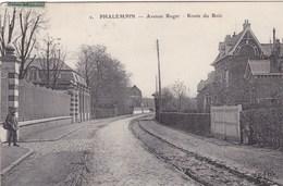 Nord - Phalempin - Avenue Roger - Route Du Bois - Autres Communes