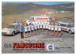 CARTE CYCLISME GROUPE TEAM FAMCUCINE 1980 FORMAT 17 X 24 - Cyclisme