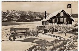 RIGI - STAFFELHOHE - HOTEL U. PENSION EDELWEISS - Rigi Staffelhöhe - LUCERNE - 1949 - Vedi Retro - Formato Piccolo - LU Lucerne