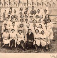 """Photo Faculté De Pharmacie à Paris Année 1951 """" Provenance Famille Baraille, St Dizier Leyrenne En Creuse"""" - Photographs"""