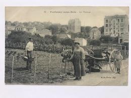 Fontenay-Sous-Bois - Le Plateau - Fontenay Sous Bois