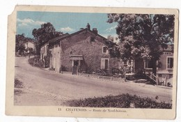 Carte Postale Chatenois Route De Neuf Chateau - Chatenois