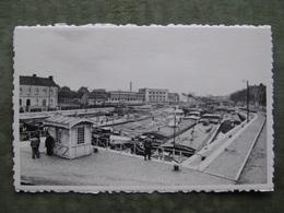 GENT - SCHELDE SAS ( 2 Scans ) - Gent