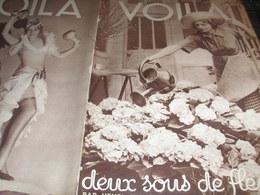 VOILA 34/FLEURS JEANSON/EDMOND LOCARD ST CHAMOND CALUIRE MEDECIN/CANARIES /JOUEURS DE BOULES PROVENCE - Livres, BD, Revues