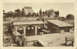 Roma - Palatino - Casa Di Livia [AA23-1.616 - Non Classés
