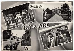 SALUTI DA RONCADE - TREVISO - VEDUTE - Treviso
