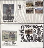 Namibia Maltahohe 1991 / Mountain Zebra, Animals / FDC - Namibie (1990- ...)