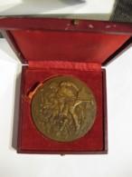 Medaille VULCAIN  Société SECCACIER Chaudières En Acier 20 Ans 1946-1966 - France