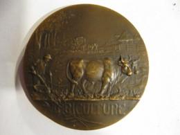 Medaille Agriculture Par MATTEI - France