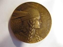 Medaille Syndicat General Des Tireurs Francais  S.AG. GALLIA Par Pillet - France