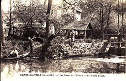 77 . Seine Et Marne .  Combs La Ville . Les Bords De L' Yerres :  La Vieille Souche . - Combs La Ville