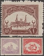 Turquie 1923 Y&T Bienf. 13/5, Michel Bienf.A N° XIX à XXI. Neufs Sans Charnière. Croissant Rouge. Bateau, Infirmière - Croix-Rouge