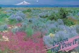 Postcard Oregon High Desert Central Oregon Juniper Trees & Sagebrush Mount Hood In Distance My Ref  B23259 - United States
