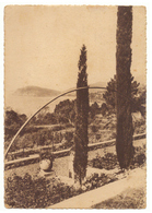 CPSM. Le Canadel. Jardin. Timbre. Cachet. Flamme. - France