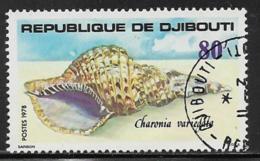 Djibouti Scott # 481 Used Sea Shell, 1978 - Djibouti (1977-...)