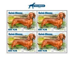 Guinea Bissau  2018  Dogs Fauna  S201811 - Guinea-Bissau