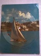 CARTOLINA-DISCO BERMUDA MUSICAL SELECTION THIS IS BERMUDA ARTISTS H.SMITH & CORAL ISLANDRS LB 33 1/2 RPM  (113) - Cartoline
