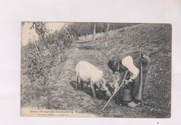 CPA DEUX PERIGORDS TROUVANT LA TRUFFE En 1907! - Périgueux