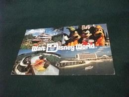 WALT DISNEY WORLD  VEDUTE RICHARD F. IRVINE STEAMBOAT GOOFY MICKEY AND PLUTO RIVER COUNTRY HOTEL PICCOLO FORMATO - Disneyworld