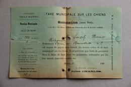 Reims (Marne), Taxe Municipale Sur Les Chiens, Fin XIXe S., Ensch Pierre Photographe - Collections