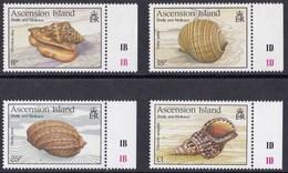 ASCENSIONE 1989 CONCHIGLIE E MOLLUSCHI - Ascensione