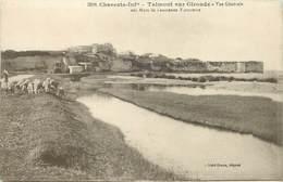 TALMONT SUR GIRONDE - Vue Générale. - France