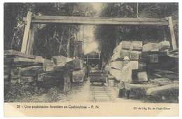 Carte Verso Vierge Cochinchine - Une Exploitation Forestière - Viêt-Nam
