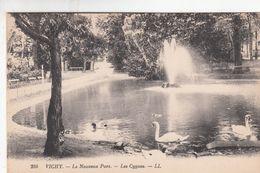 Cp , 03 , VICHY ,  Le Nouveau Parc, Les Cygnes - Vichy