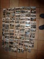 Lot Vrac De 83 CARTES POSTALES De France Etc(Cartes Postales Semi-modernes Et Modernes Comprenant :scènes Diverses, Etc - Cartes Postales