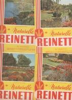 LOT De 10 Buvards Biscotte Reinette ( THEME FLEURI ) - Biscotti